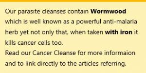 cancer and wormwood