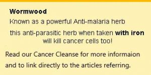 excellent anti-malaria herb