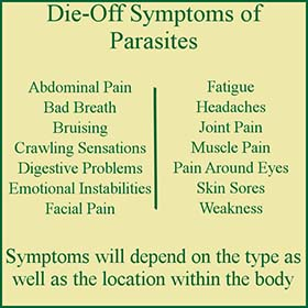 die off symptoms of parasites