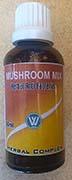 mushroom tincture
