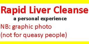 Rapid Liver Cleanse experience